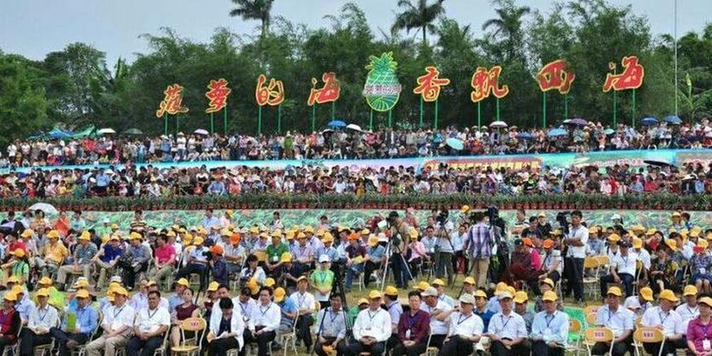 2017年徐闻菠萝文化旅游节 北活靠活北活松脚