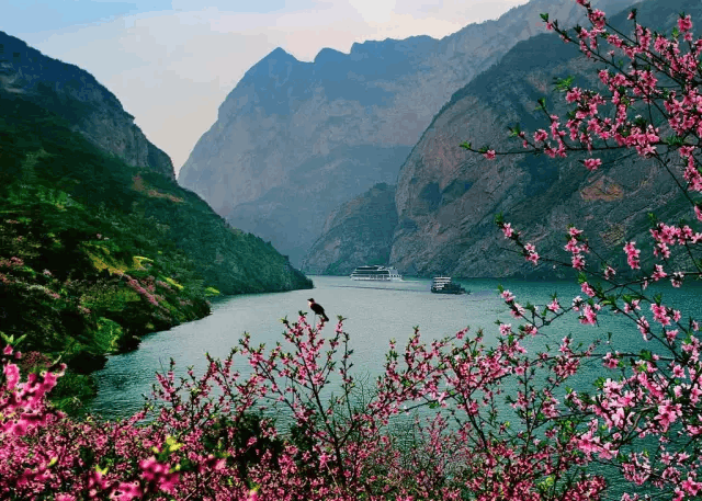 百丈悬崖上的中国古村落 带着与世隔绝的神秘莫测