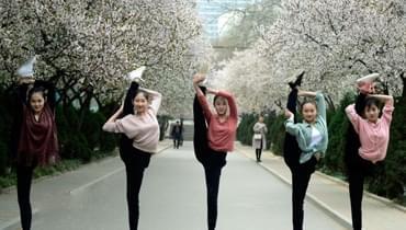 高校舞蹈系女生花海中起舞 集体表演劈叉一字马