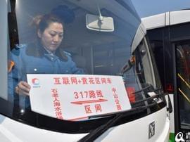 约起来吧!青岛梅花节本周四开幕 公交指南出炉