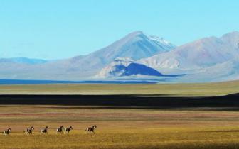 国内最大的无人区 风景美的让人窒息!