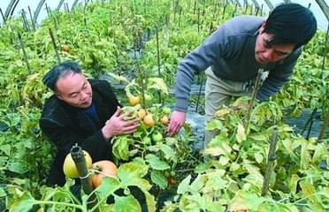 打好旅游扶贫牌 惠州今年确保46个省级贫困村脱贫