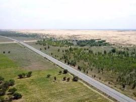 内蒙古晒五年来生态保护建设成绩单