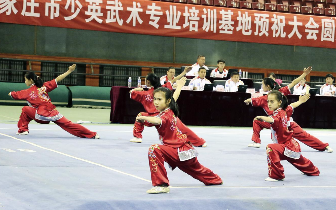 河北省第十五届运动会武术套路预赛落幕