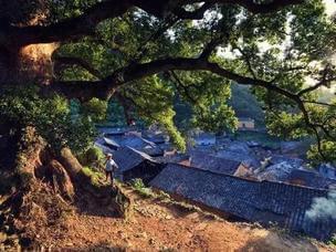 浙8个最撩人的江南烟雨地 99%的人去错时节