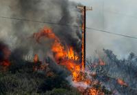 电线正成加州火灾头号祸首 技术能解决这个难题