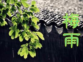拒绝湿漉漉,还你一个精神焕发的梅雨季