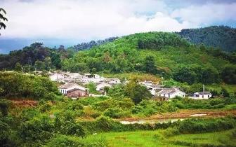"""海南将启动首批""""海南老字号""""认定 建成一批美食村庄"""