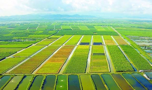 十万亿农业互联网市场  下一个独角兽究竟花落谁家?