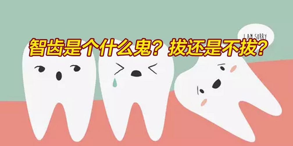 智齿是个什么鬼?拔还是不拔?