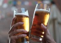 科学家使用基因编辑技术酿造啤酒,口感更带劲