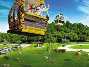 免费坐空中缆车720度看野生动物