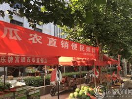 今夏运城市区设立十一个瓜果直销便民摊群