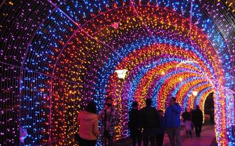 宁德迎春灯会 十多组灯雕点亮北岸公园
