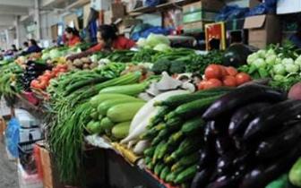 寒流不断 福州蔬菜价格本月或将平稳上扬