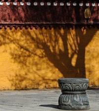 第32期:雪域莲花 坛城拉萨