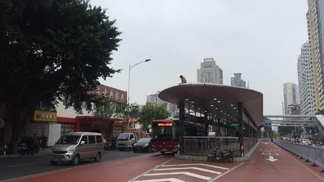 最后的准备:南宁快速公交一号线开门迎客倒计时