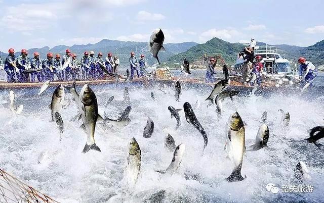 韶关这国际基地将举办首届捕鱼节!吃喝玩乐样样有