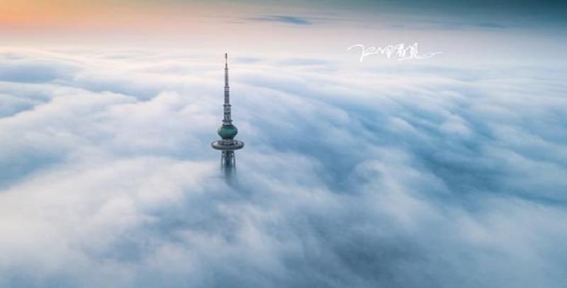 平流雾季接近尾声 青岛这组治愈系美图不容错过