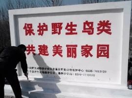 乐亭县农牧局加强春季野生鸟类保护工作