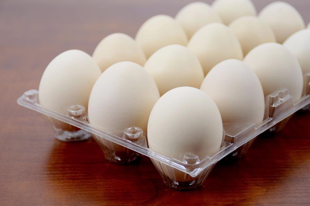 英德九龙300贫困户获赠营养鸡蛋