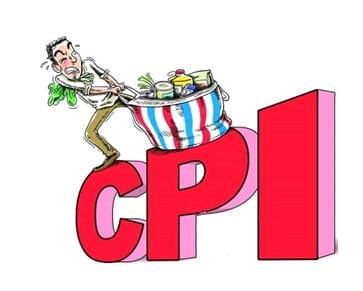 连平:预计5月CPI同比将继续上升 年内无通胀压力