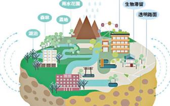 """揭阳海绵城市规划出炉 4大指标改善让雨天不""""看海"""""""