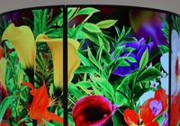 液晶电视已去:国产OLED屏逆序,追赶韩系厂商