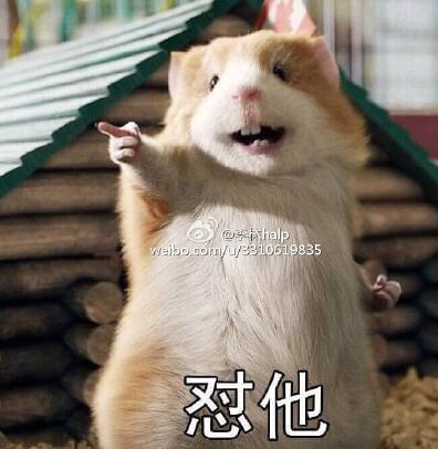 每日轻松一刻:什么!大熊猫的屎是香的?图片