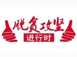 陕州区统计局多策并举脱贫攻坚不含糊