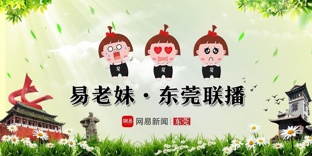 05.15易老妹|东莞新闻联播