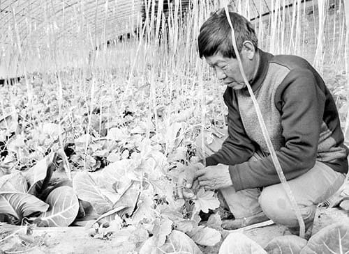 南元村示范园成为农民创业基地