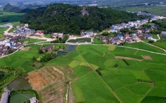 数字经济下一片蓝海 农业农村工作将推进3项试点