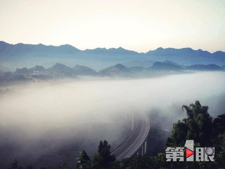 重庆现平流雾景观 梦幻十足