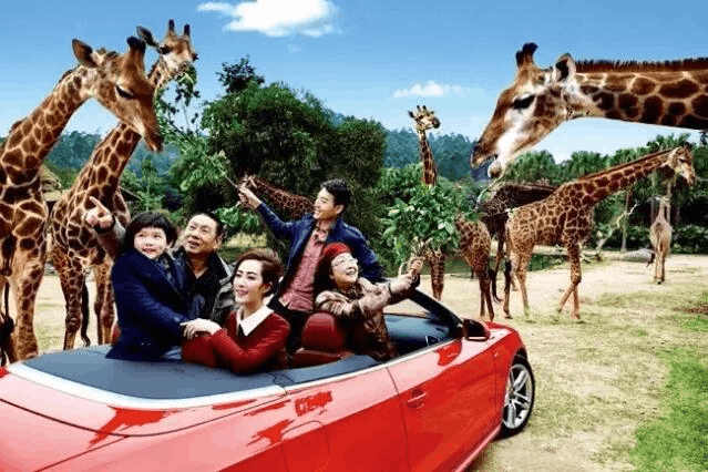 投资10亿野生动物王园落户纪南文旅区 10月或开工