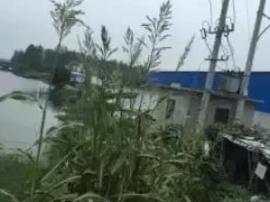 兴化一男子持8米长鱼竿偷钓 触碰高压线被电身亡