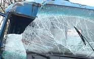 泰兴一卡车撞倒大树 副驾驶女子被困车中