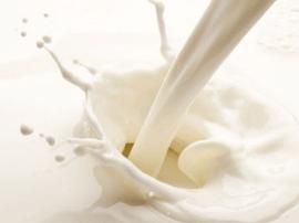 温馨提示:街头买鲜羊奶 煮沸后再饮用
