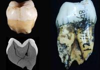人类可能在7.3万年前就已到东南亚,再提前2万年