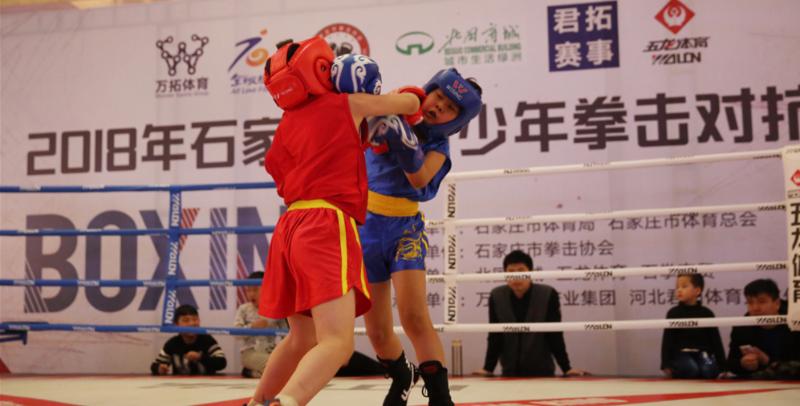 小小拳头挥舞中国力量 石市青少年拳击对抗赛活力上演