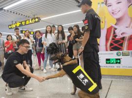 南宁地铁安保升级!出动了警犬和防暴处突小组