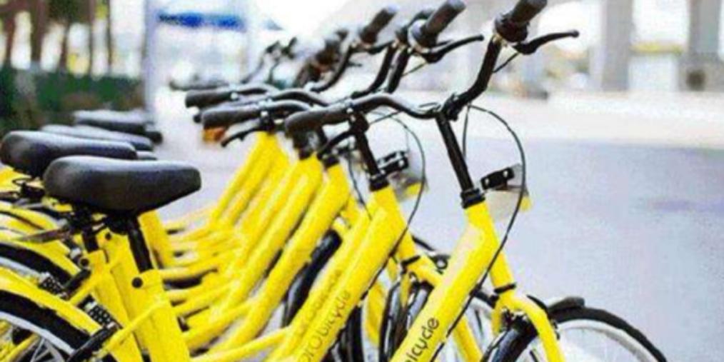 邯郸:三家共享单车在邯运营如何?