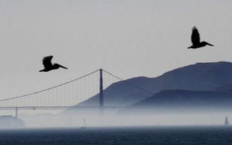 """气候变迁带来冲击 近半数民众在呼吸""""脏空气"""""""