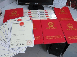 工商总局局长:推进电子化商标申请 降低办理费用