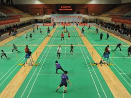 第三届京津冀羽毛球冠军挑战赛圆满落幕