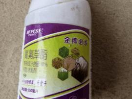 """""""金稗必杀""""除草剂让南昌8家农户水稻颗粒无收"""