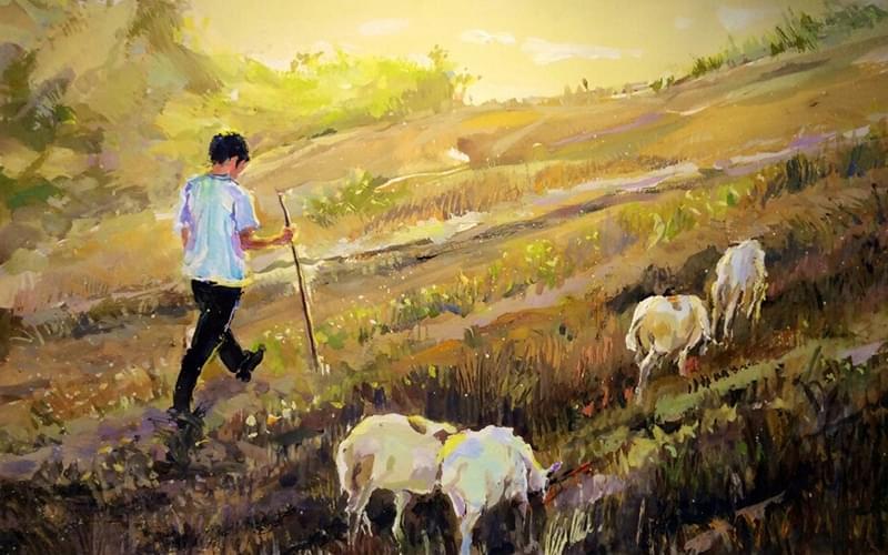 我能想到和燕儿一起并排吃草、望天,我们会成为一支羊群里的领头羊,这是一支自由的羊群。