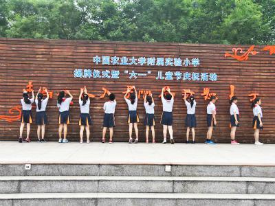2018年北京海淀重点小学:中国农业大学附属实验小学(原学府苑小学)
