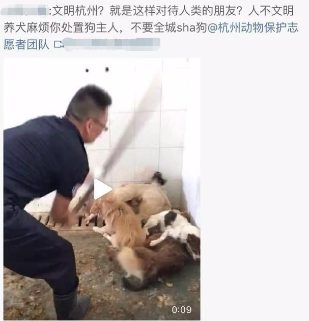 网曝杭州血腥打狗,现已辟谣