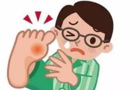 """尿酸增高,哪些食物该""""背锅""""?"""